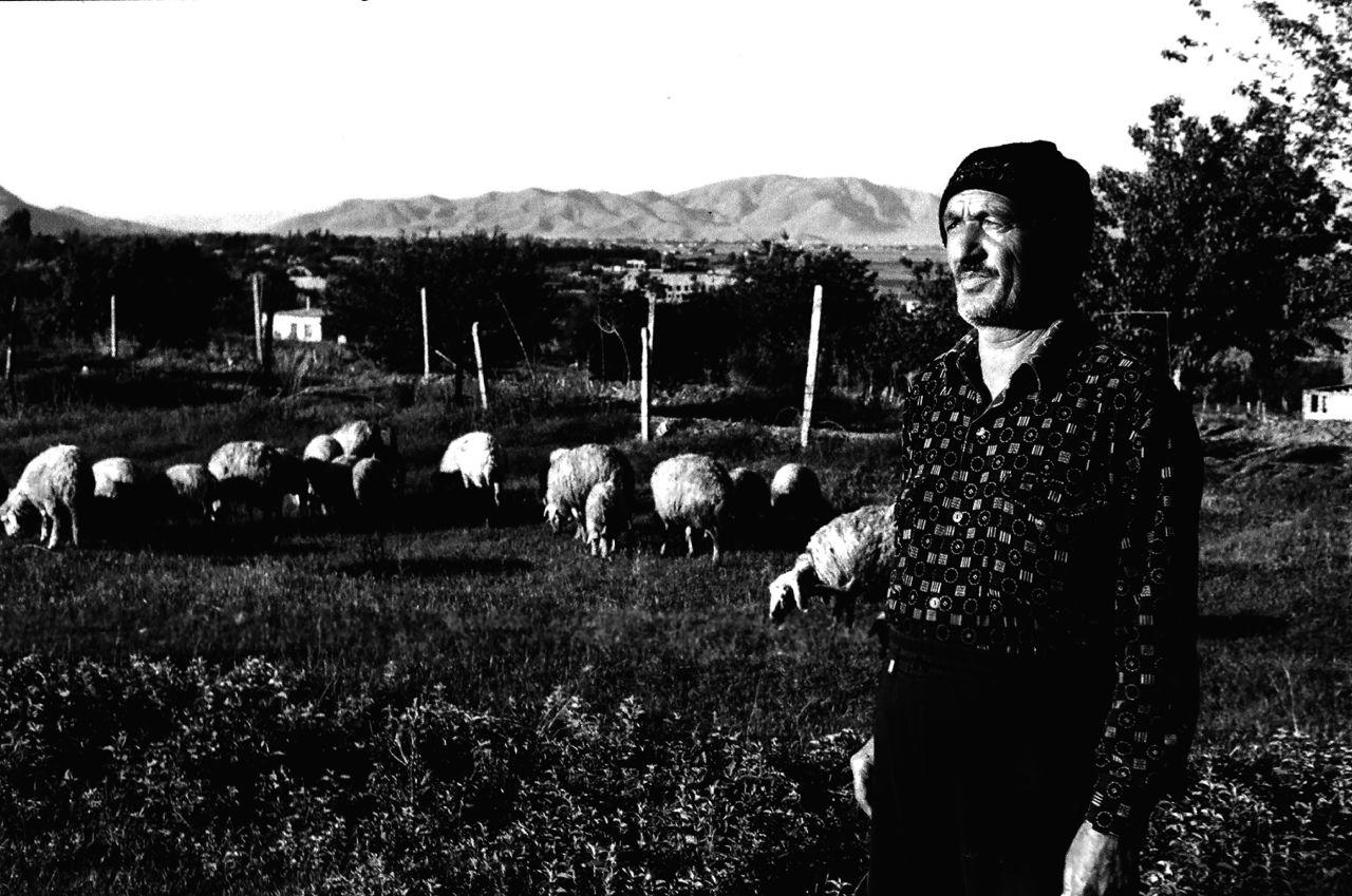 2.Evin arxasında qoyunlarını otaran bir kişi.Sədərək,Naxçıvan.