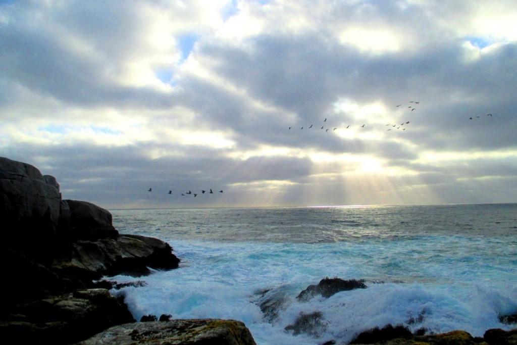 Тихий океан - не такой уж и тихий