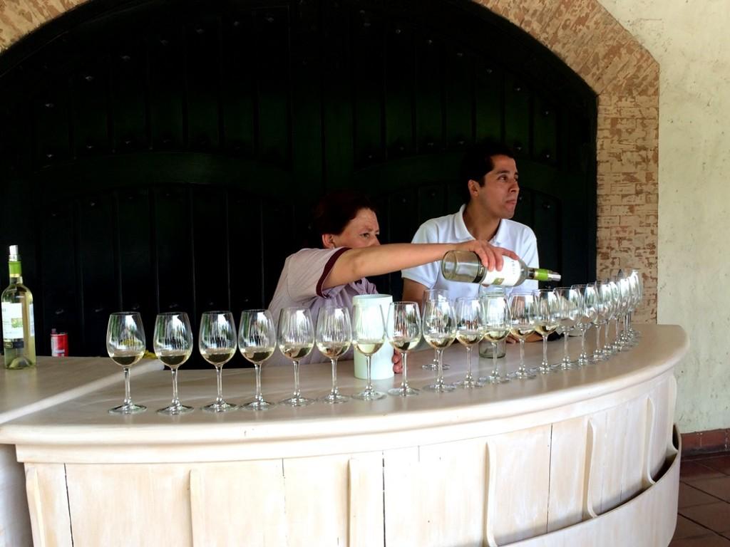 Дегустация вин в Конча и Торо