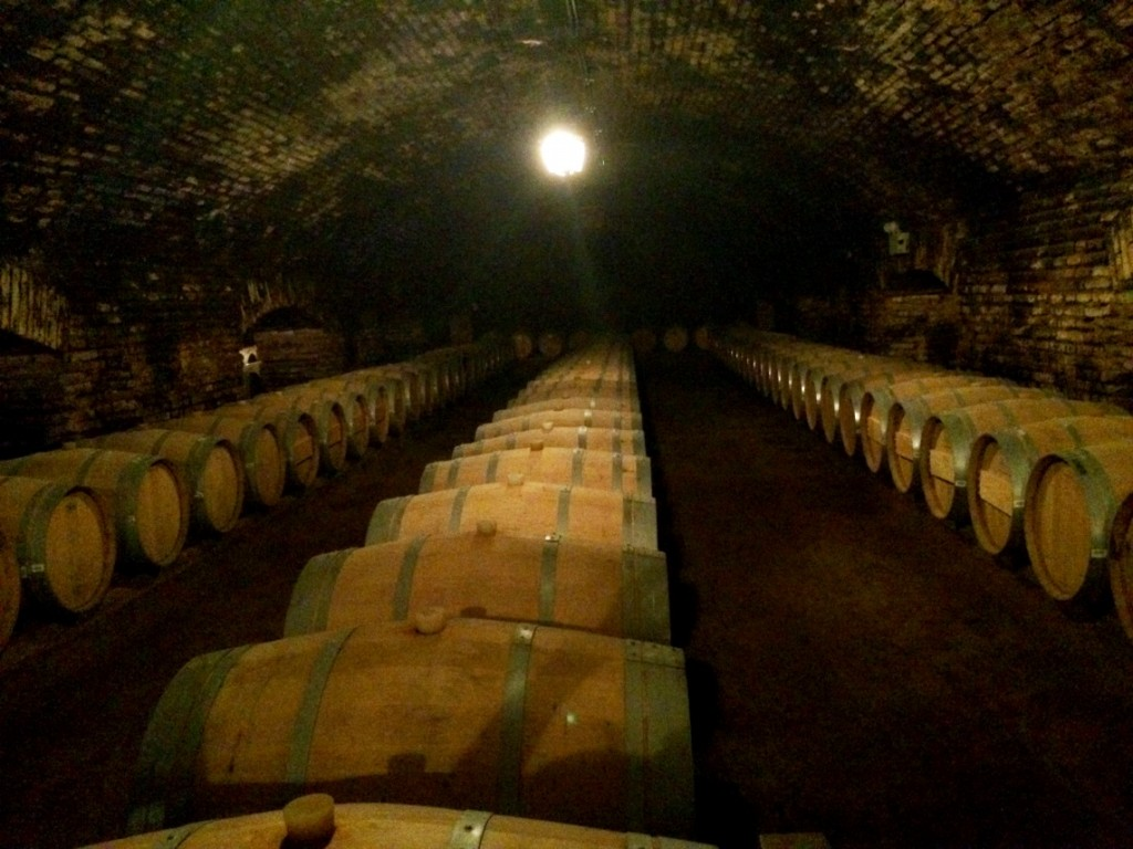 Погреб в самой известной в Латинской Америке винодельне Concha y Toro